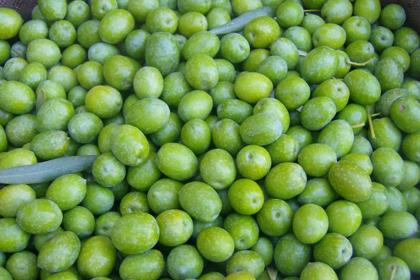 Aceitunas verdes extras de mesa ecológicas para aliñar
