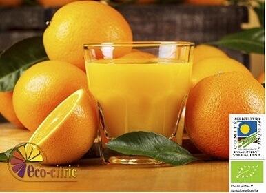 Naranjas ecológicas de zumo 20 Kg