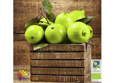 Limones verdes ecológicos 20 Kg