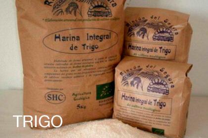 Harina integral de Trigo ECO 5 Kg