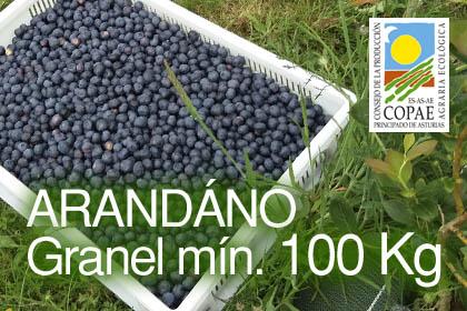 Arándanos ecologicos 10 €/Kg