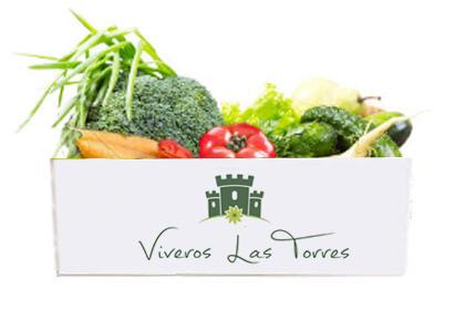 Cesta ECO verduras 8-10 Kg