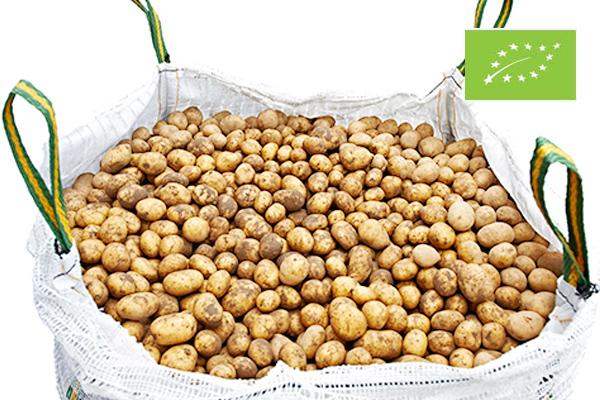Oferta patatas ecológicas en Big Bag