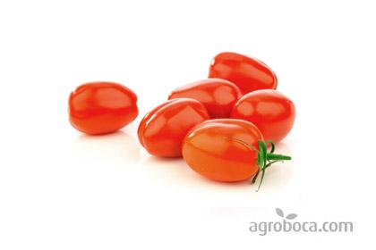 Tomates pera ecológicos