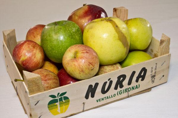 Oferta Manzanas
