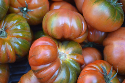 Tomates valencianos 8 Kg