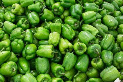 Pimientos ecológicos verdes