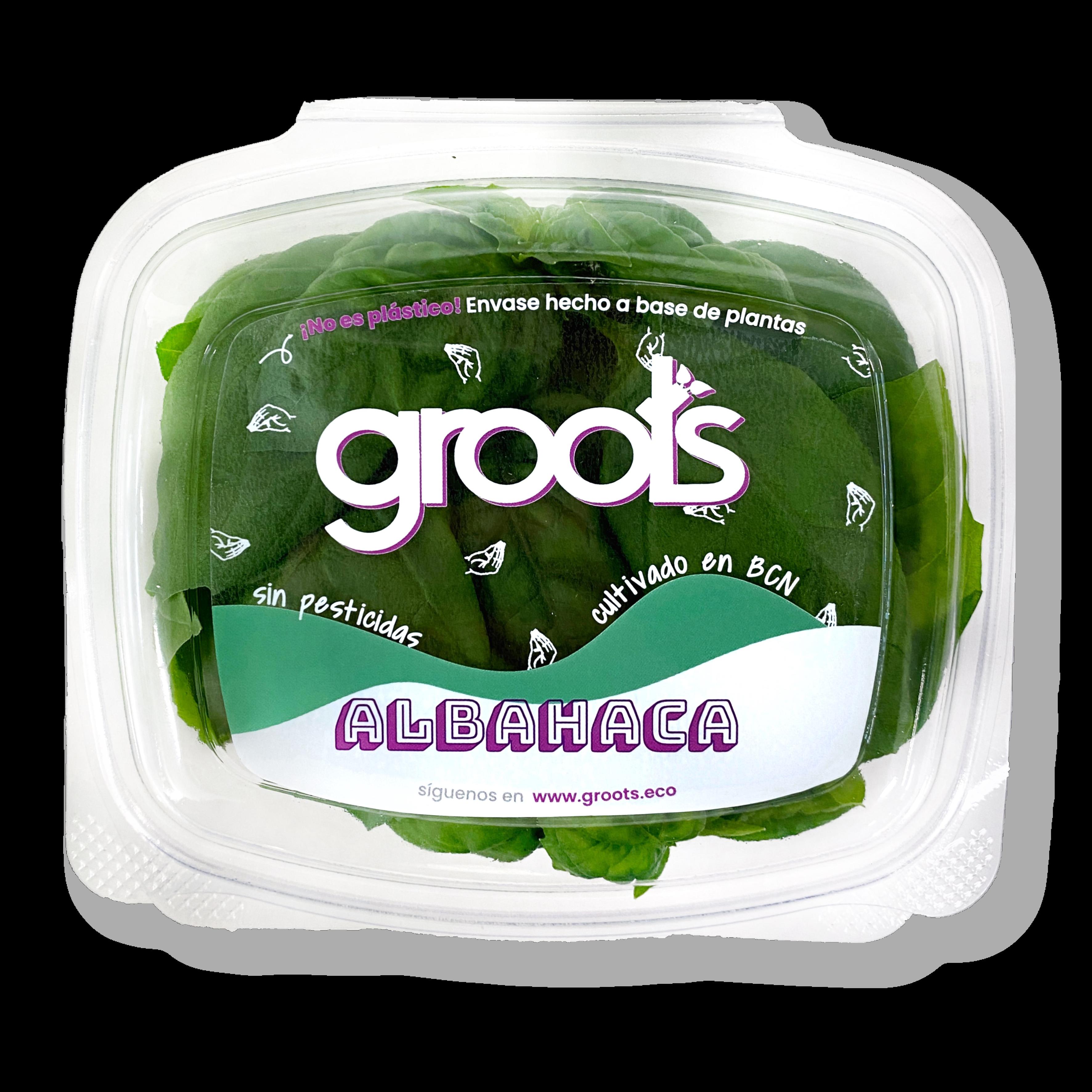 Pack Alfàbrega sostenible i sense pesticides