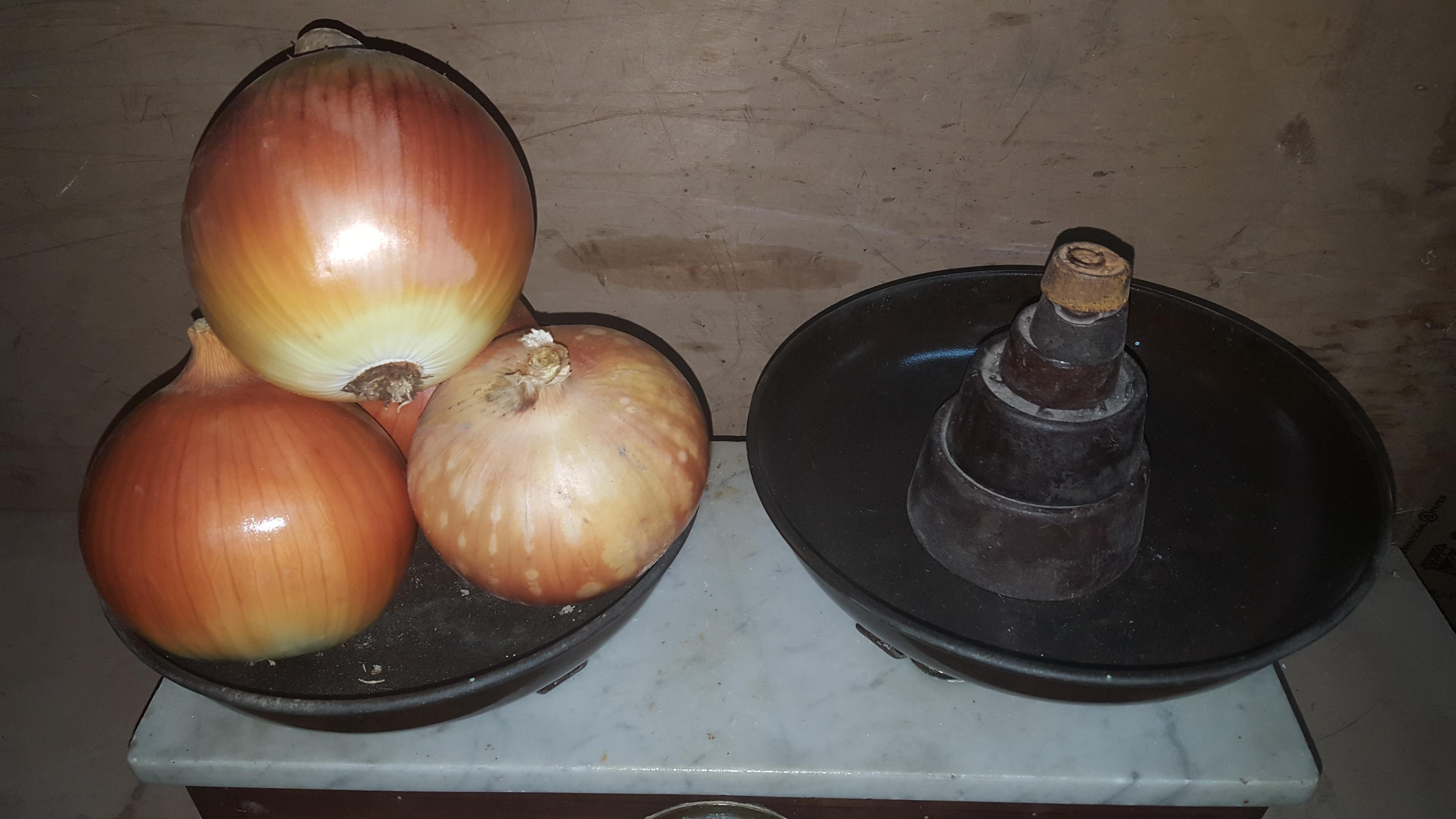 Cebolla Valenciana grande