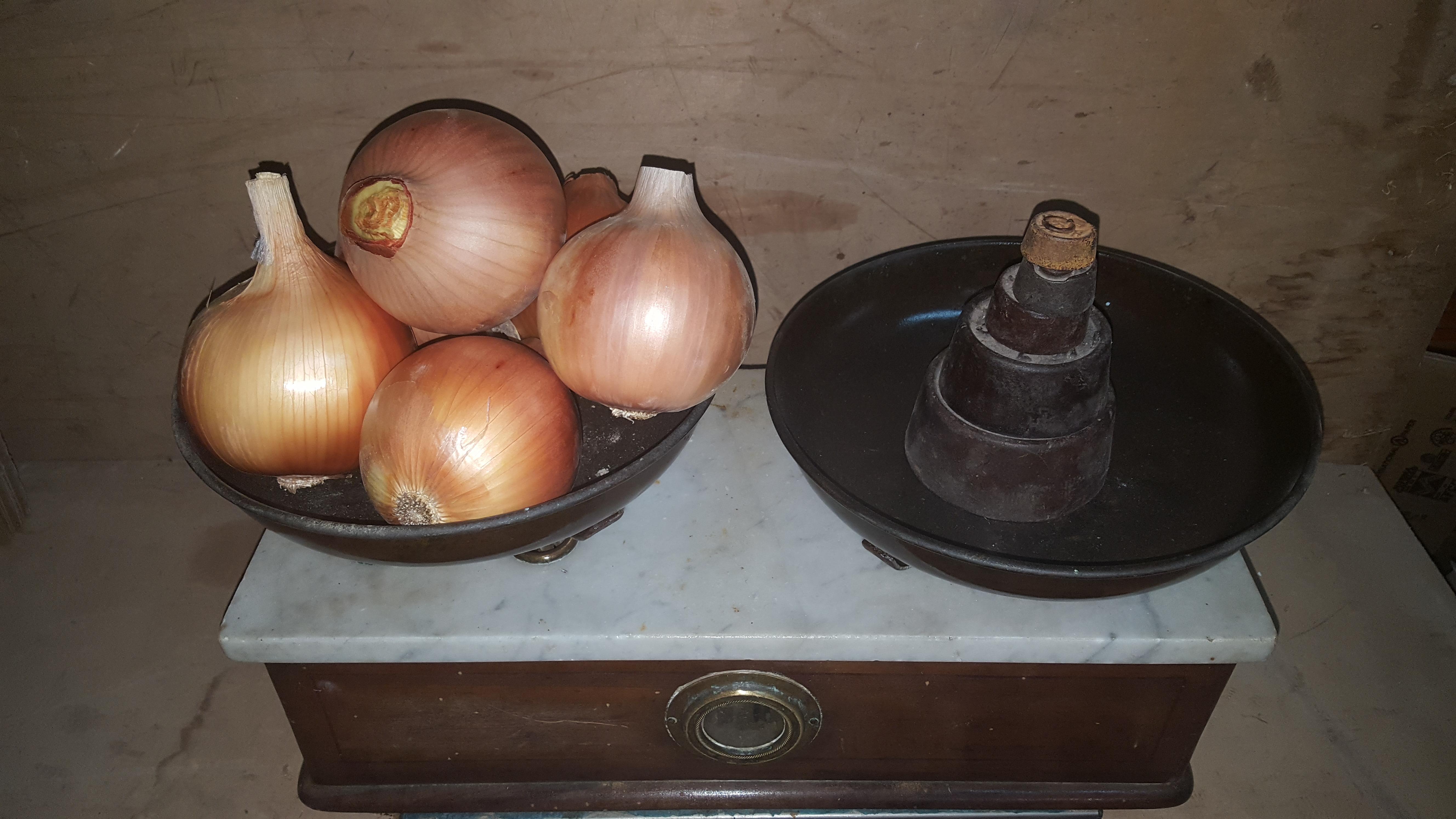 5 kilos de Cebolla Valenciana