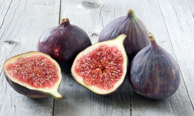 Figs from Barcelona