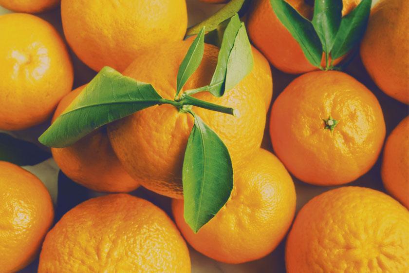 Naranjas ecológicas valencianas