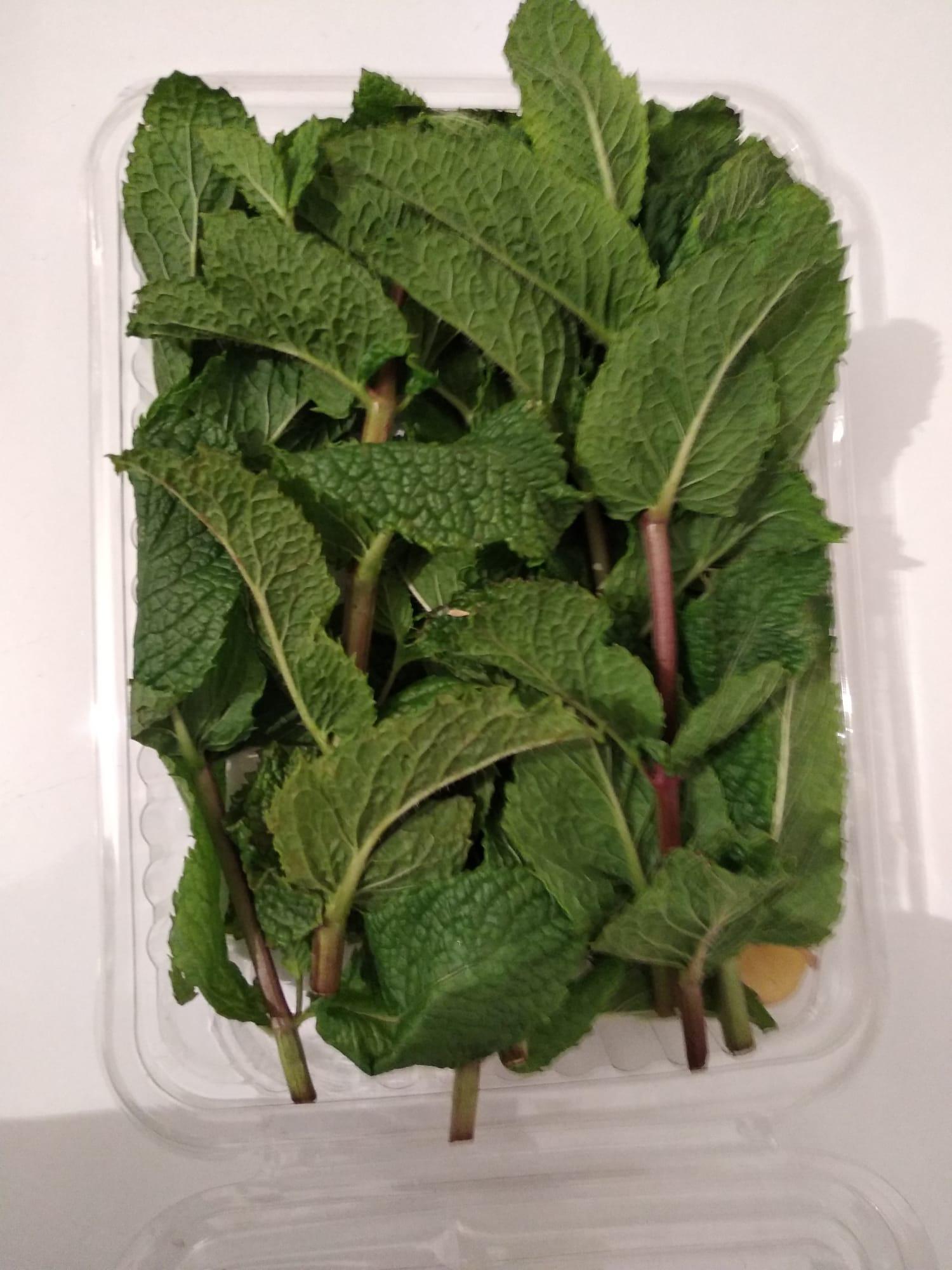 Hierbabuena fresca