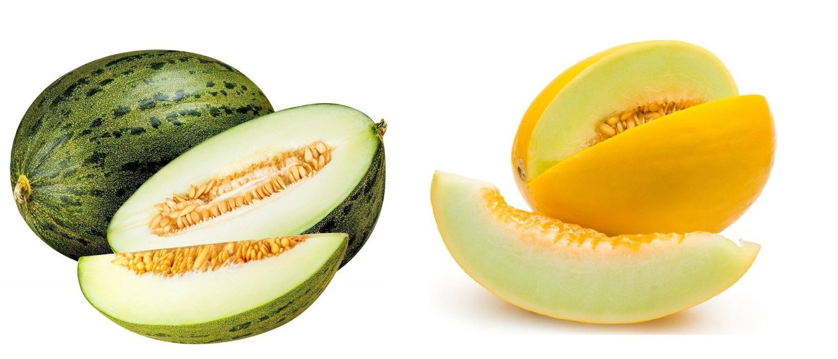 Melón amarillo y melón piel de sapo