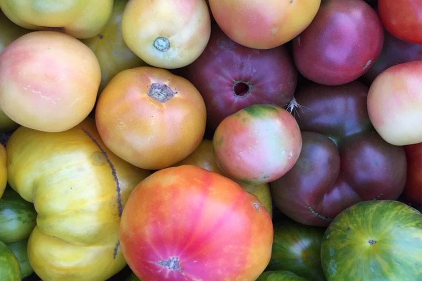 Tomates de colores. Grandes, 4Kg