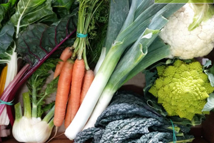 Fresh Organic vegetables box
