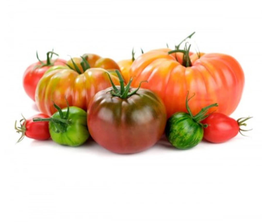 Surtido de tomates reconversión a ECO