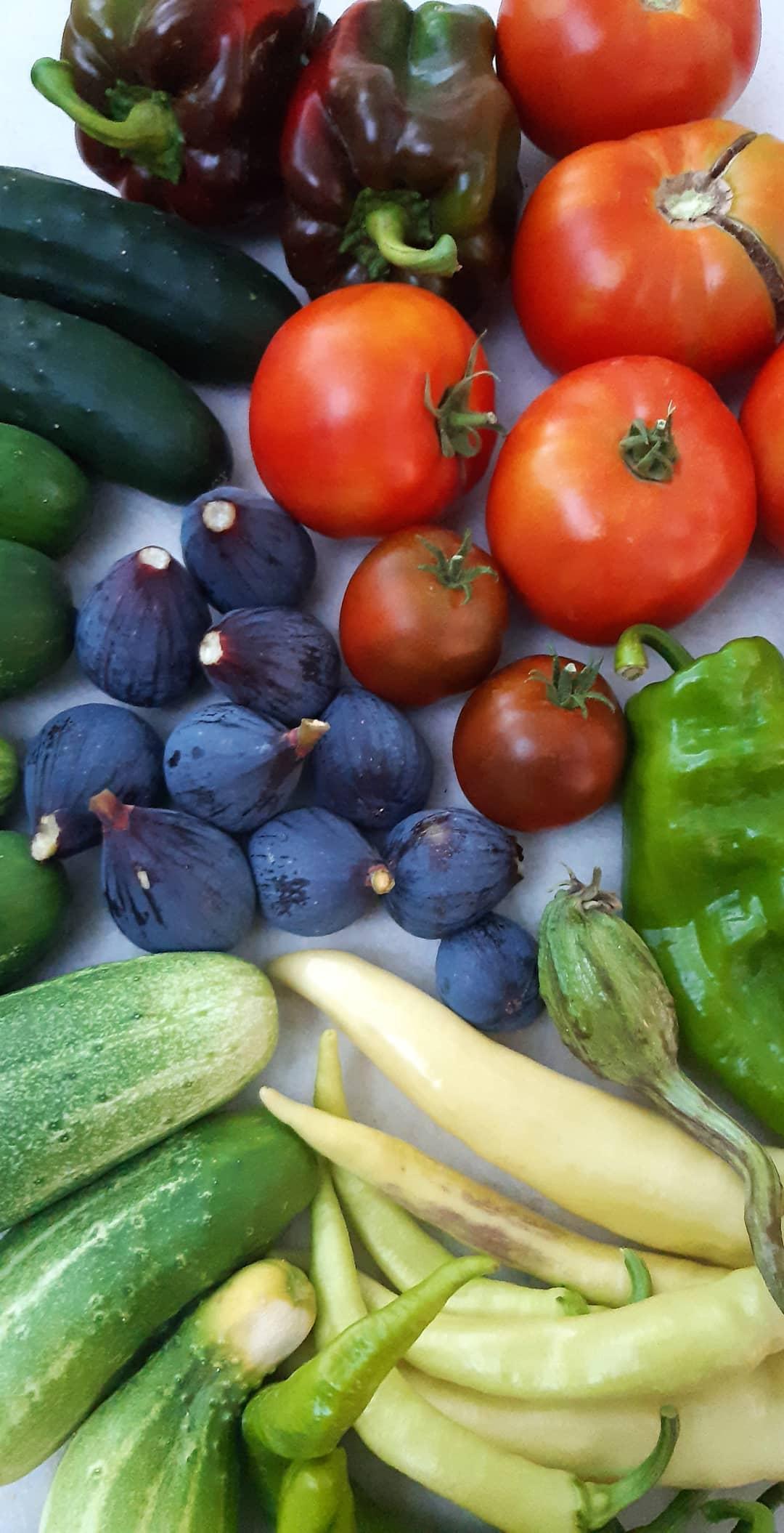 Oferta Cesta frutas y verduras de montaña reconversión a ECO de mis abuelos