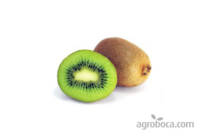Kiwis ecològics