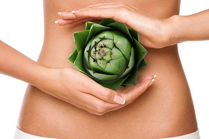 dieta rica en fibras solubles
