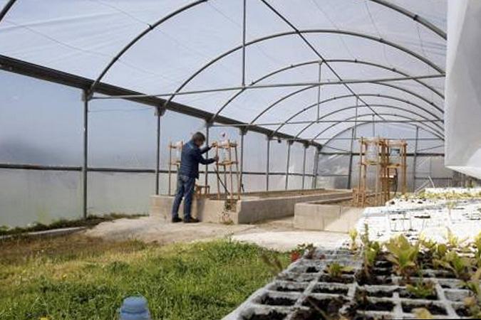 Fincas agrícolas para emprendedores