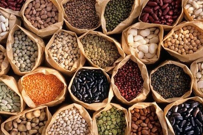 Reproducción de semillas de hortalizas