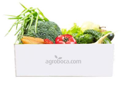 Cesta 5 Kg de verduras ecológicas