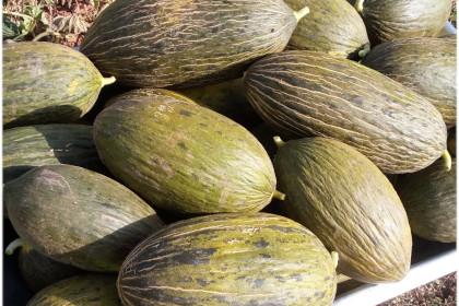 Melones (6 uds)