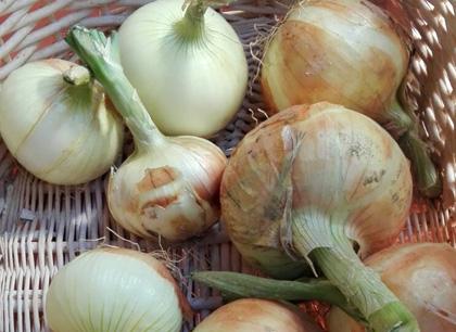 Cebolla Blanca 4 Kilos