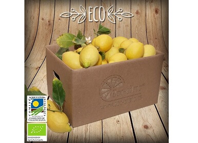 Limones ecológicos a granel (mín. 2 Kg)