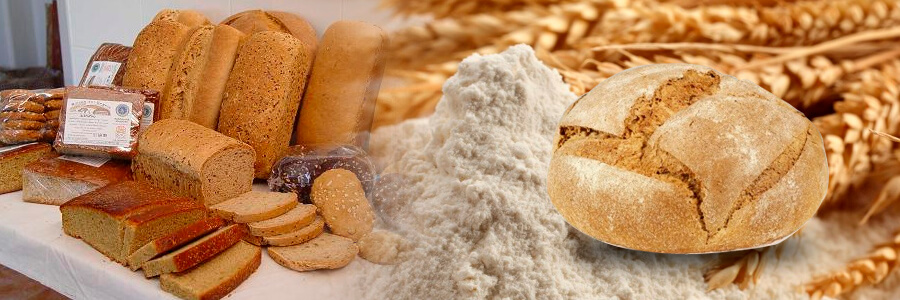 https://www.agroboca.com/productor/panaderia-ecologica/productos
