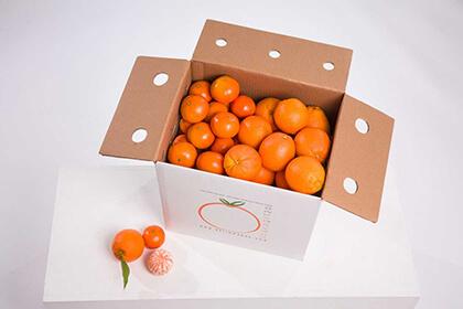 Naranja mesa+Mandarina 20kg