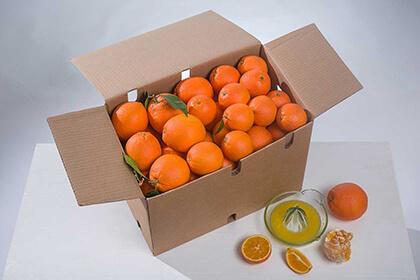Naranja mesa+zumo 15kg