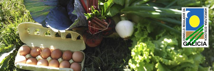 http://www.agroboca.com/productor/viveros-las-torres/productos