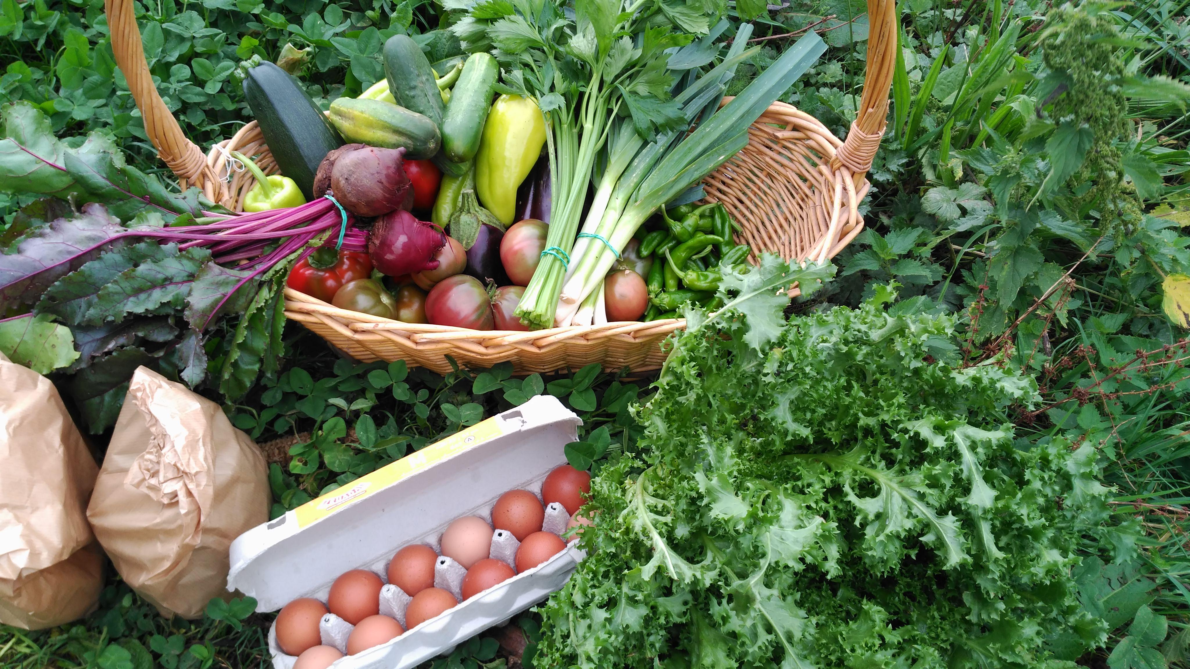 Cesta ECO verduras 7-10 Kg