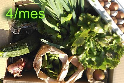 4 cestas/mes ECO verduras x 8-10 Kg