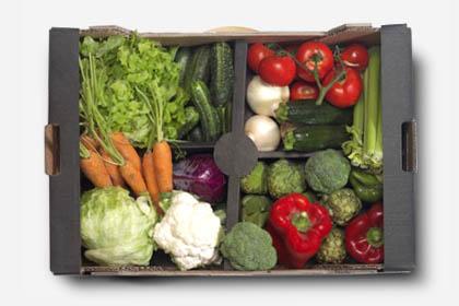 Caja verduras ecológicas 8 Kg