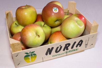 Manzanas Fuji grosses Girona