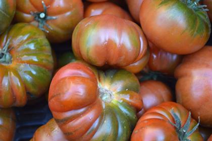 Tomates valencianos 4 Kg