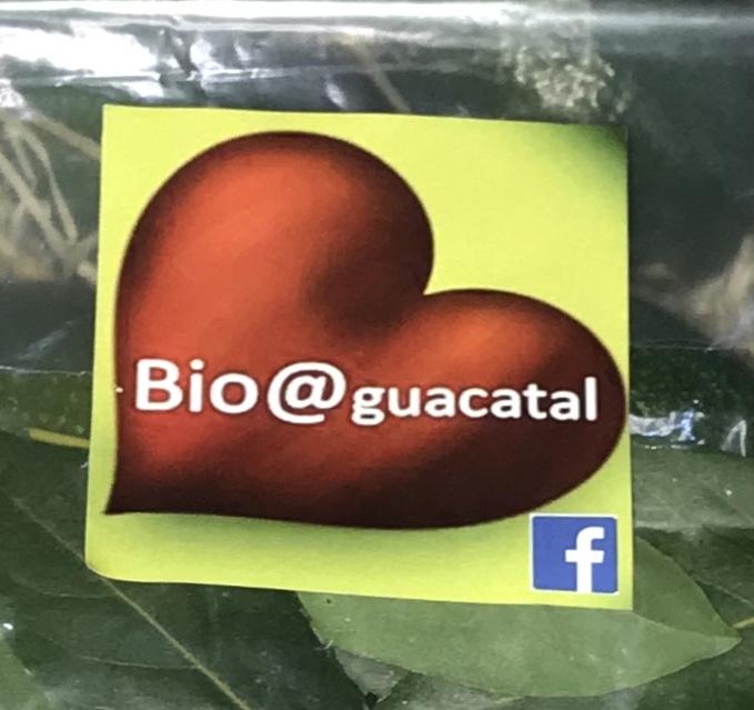 Bio@guacatal