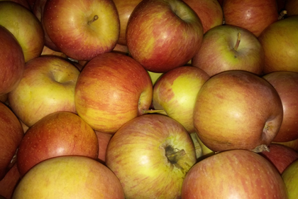 2. Todo Manzanas 7 kgs