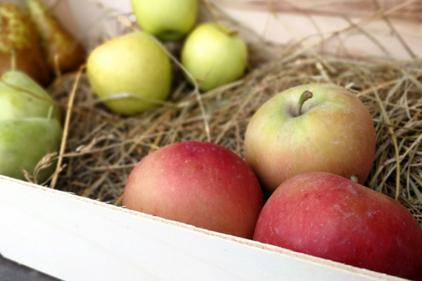 Pack 4 Kg fruita ecològica Cal Modest