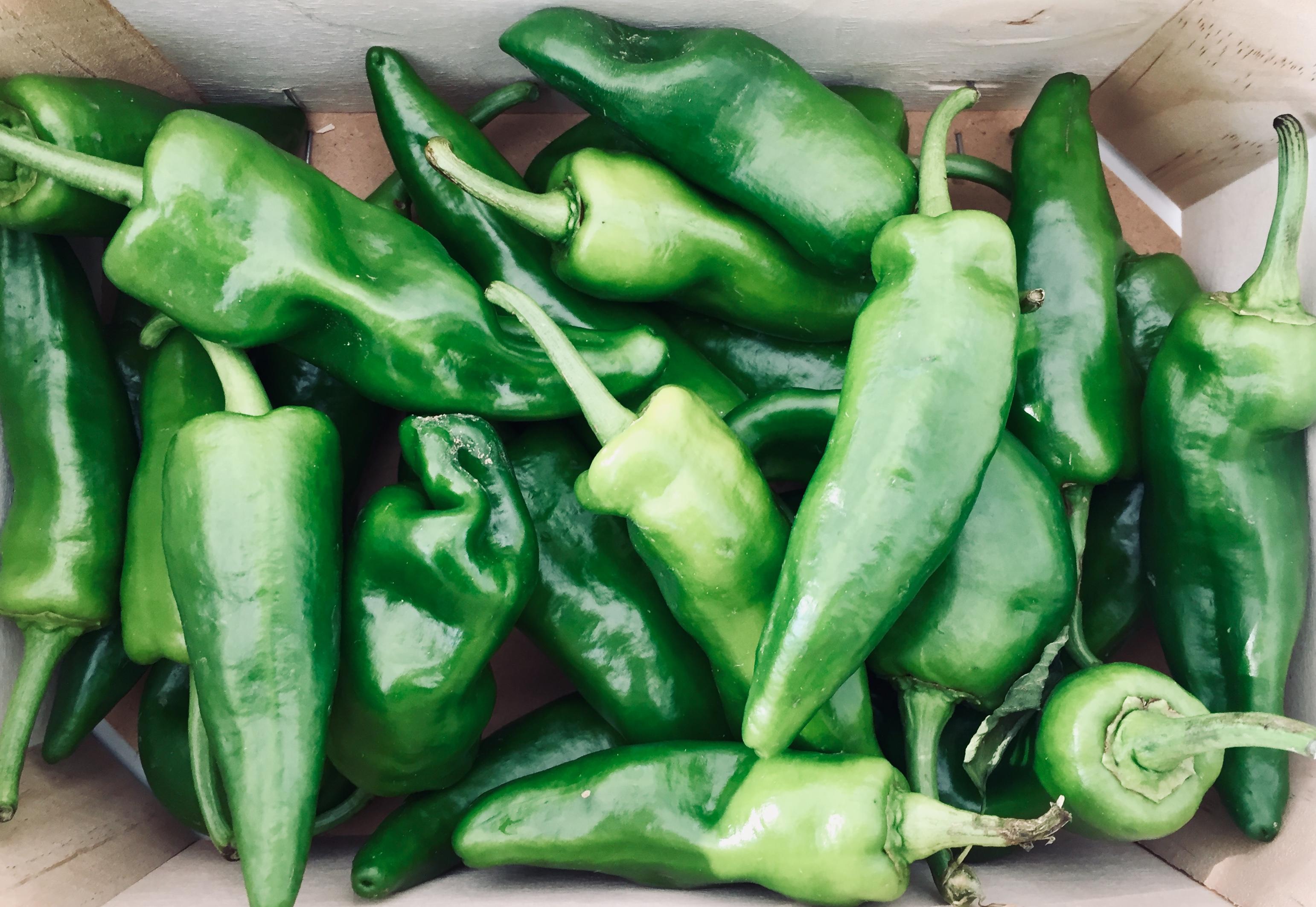 BIO Pepper