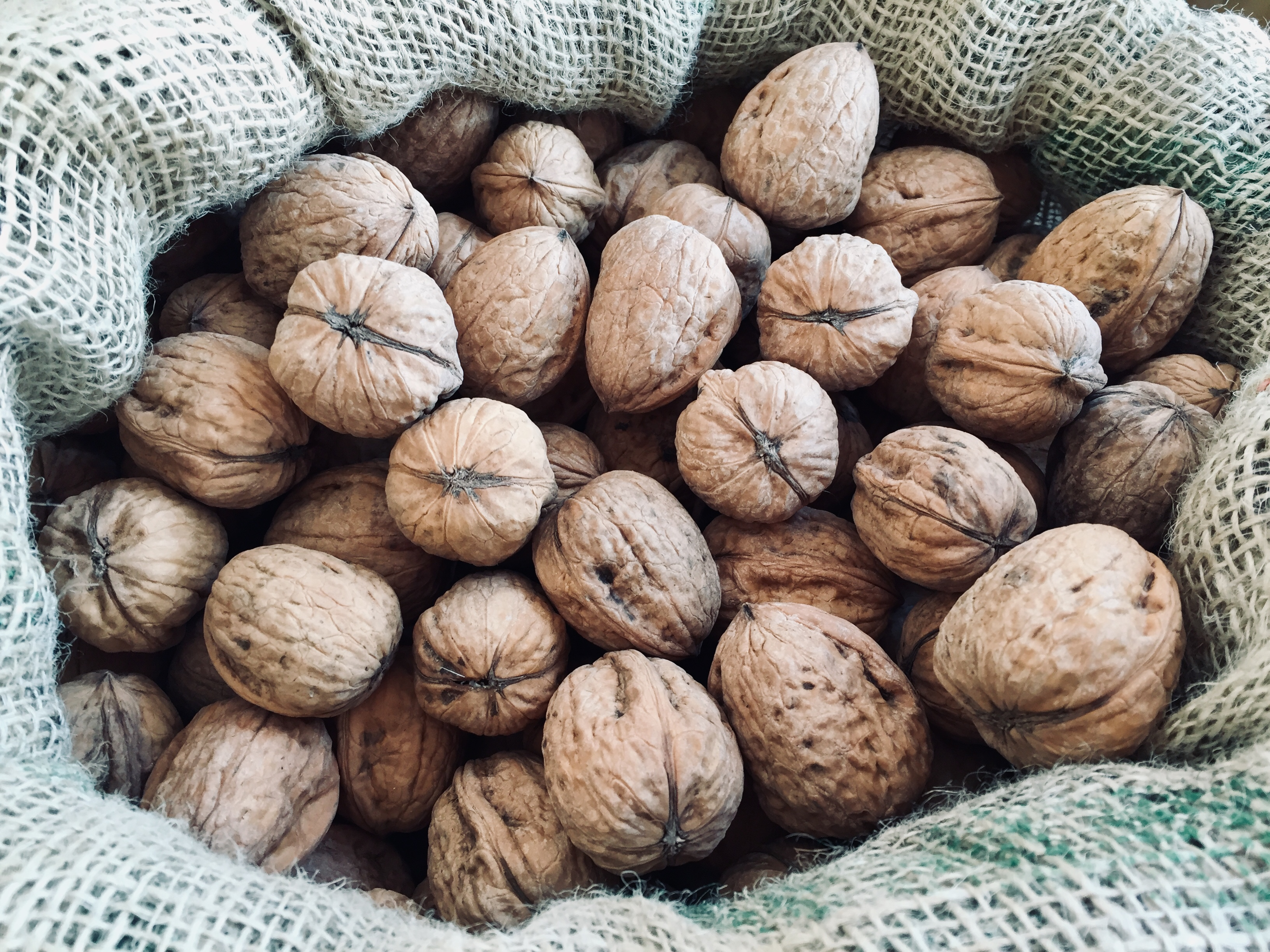 BIO Nut