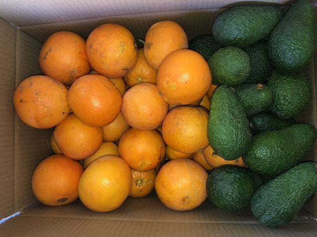 Caja mixta naranjas/aguacates