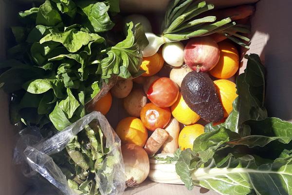 Cistella ecològica mixta de fruita i verdura 8 Kg