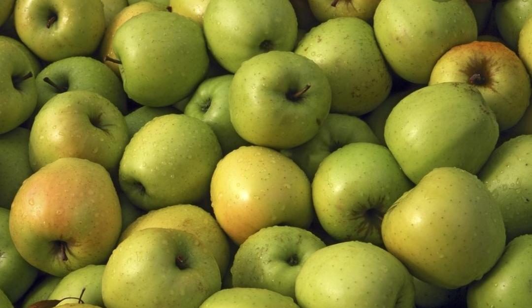 Manzana verde en reconversión a eco