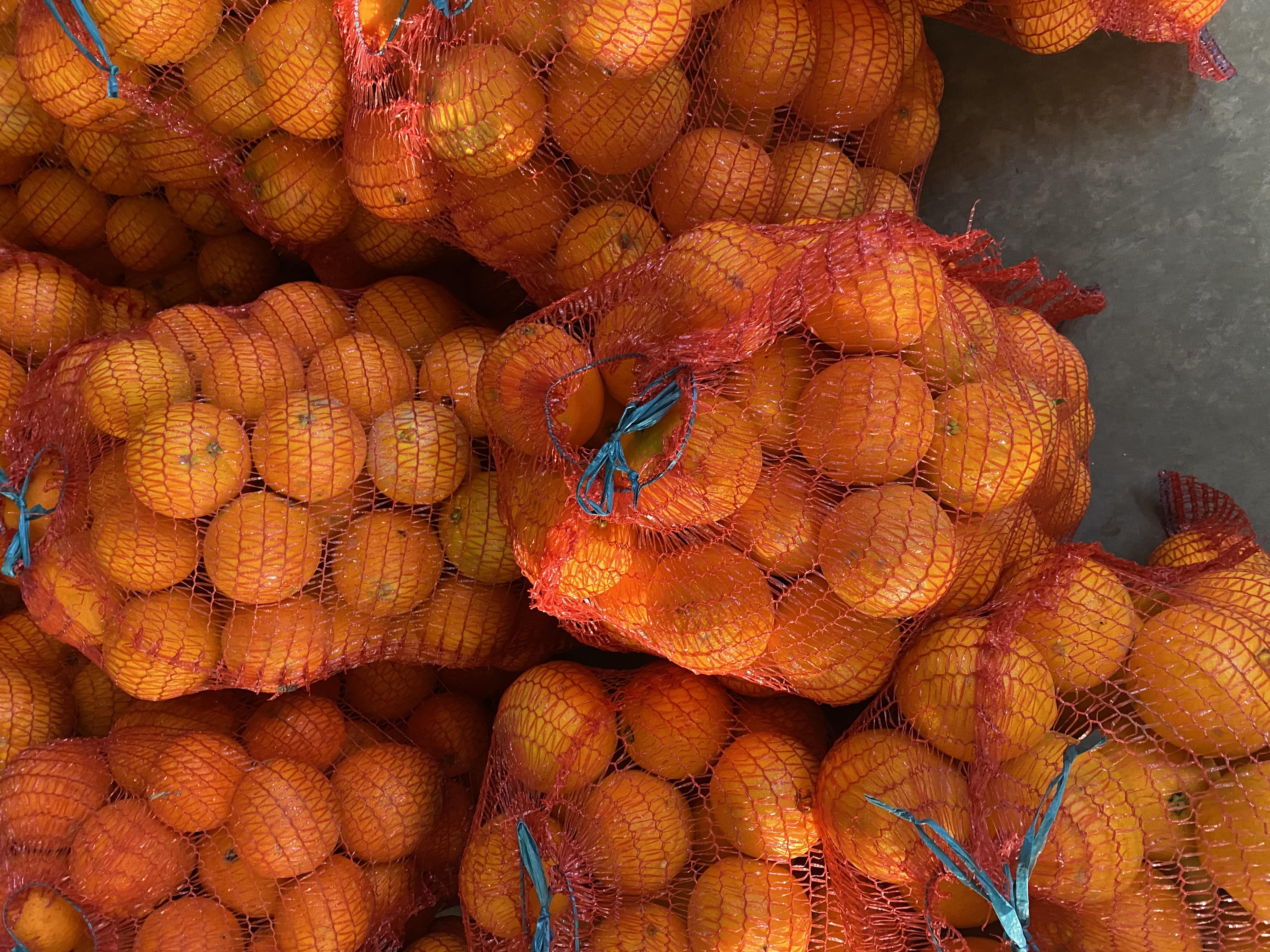 Naranja de Palma del Río