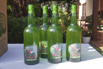 Sidra ecológica Valleoscuru (6 botellas)