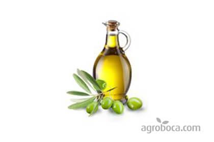 Aceite de oliva virgen extra ECO